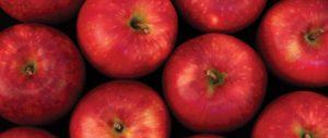 Cosmic Crisp® apples on black background