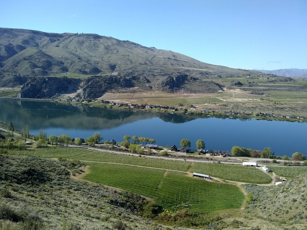 Pear orchards on the Columbia river